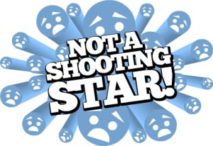 The Not a Shooting Star award for Rides, Shows and Attractions that aren't that good.